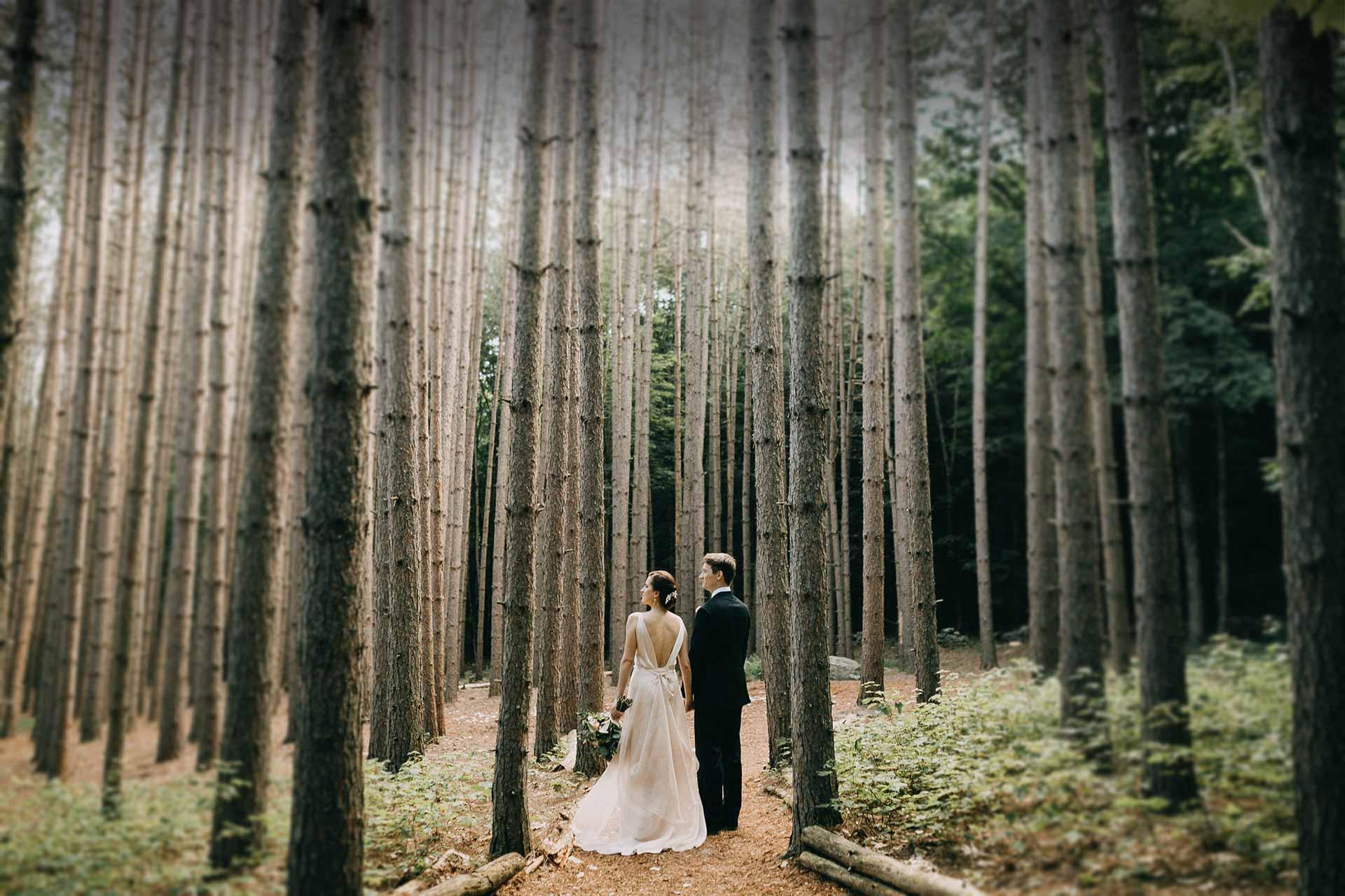 Unique Catskills wedding venue at a stylish forest mountain estate