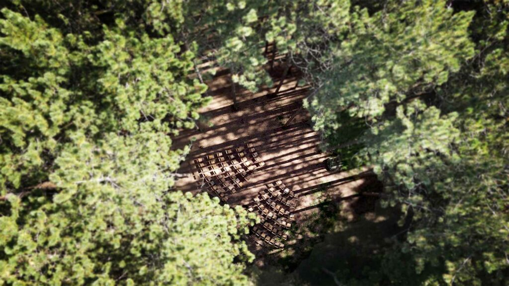 Aerial view of the ceremony site at the pine forest